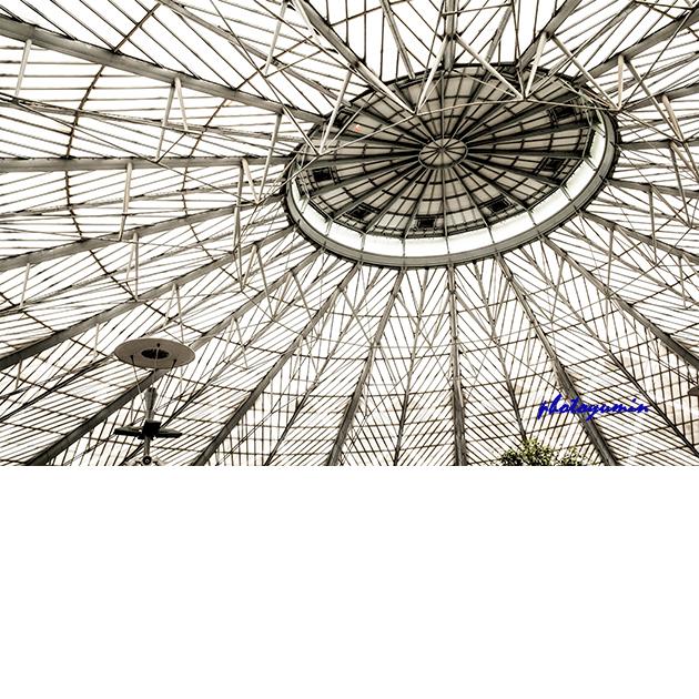 上海南站屋顶钢结构,为预应力梁索结构体系
